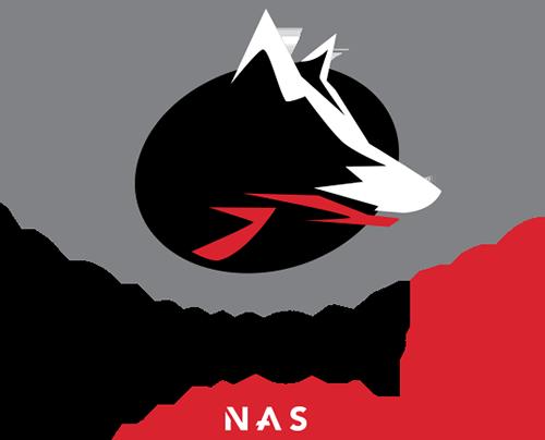 Iron Wolf Pro